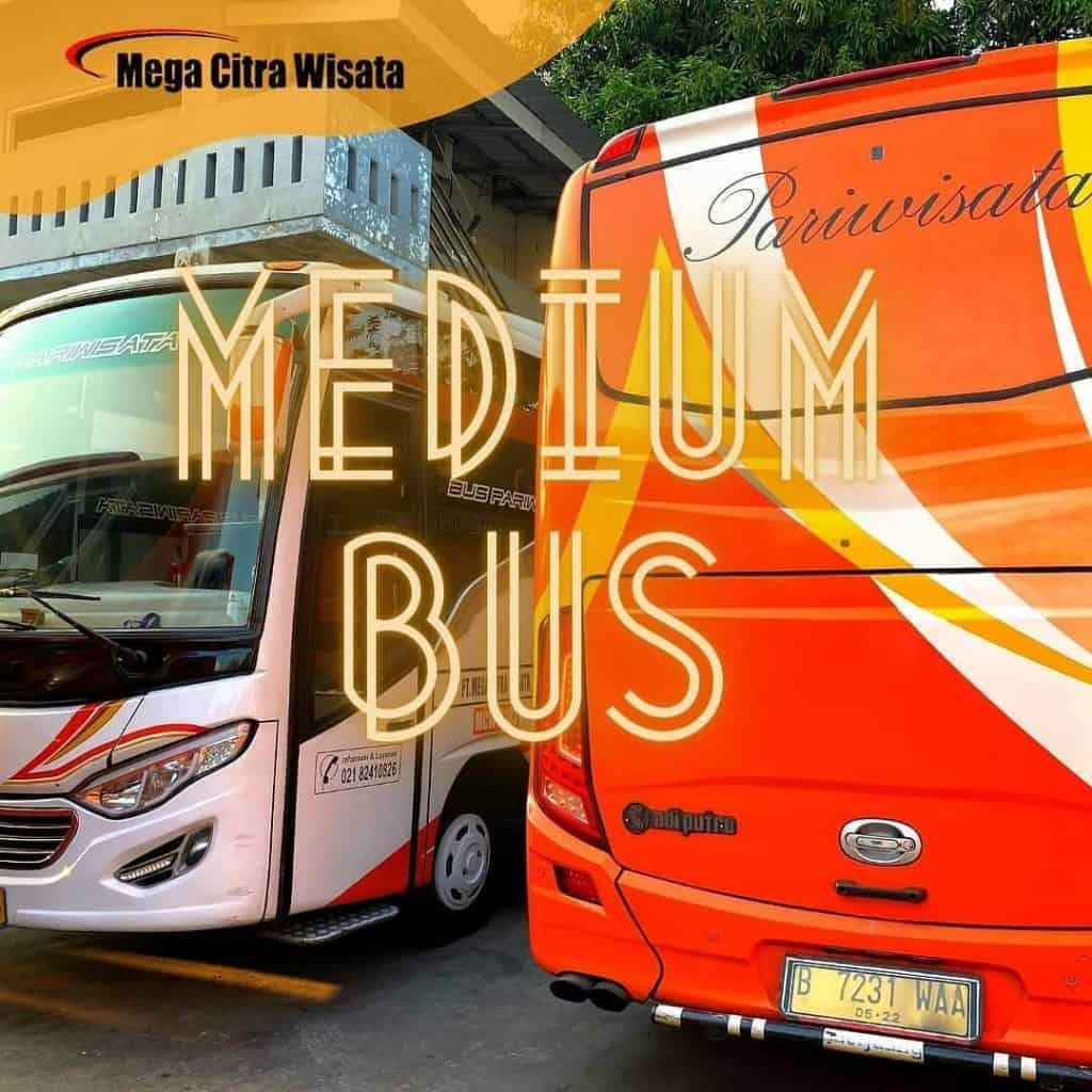 Medium-Bus-Pariwisata-1024x1024.jpeg